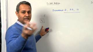 Immunology Lecture 9 (T cell receptors and Immunoglobulins) 3/4