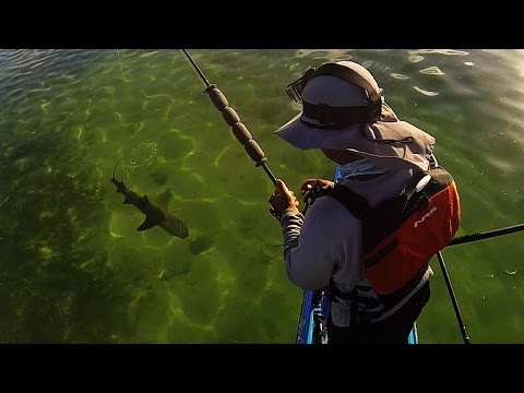 Key West Kayak Fishing - Prospecting and Shark Fishing Jurassic Island