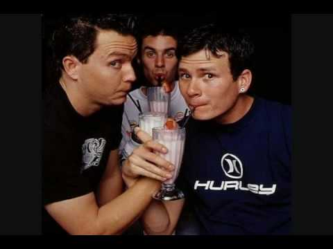 Blink-182 - the party song