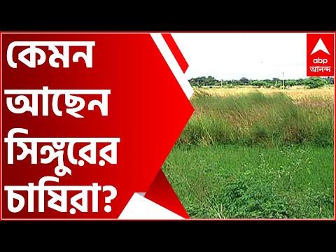 Singur: জমি ফেরতের রায়ের ৫ বছর পর কেমন আছেন সিঙ্গুরের চাষিরা? পুরনো ছন্দে ফিরেছে জীবন? | Bangla News