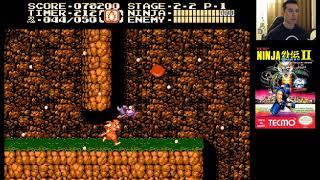 Ninja Gaiden II: The Dark Sword of Chaos (1990) for NES - Level 2
