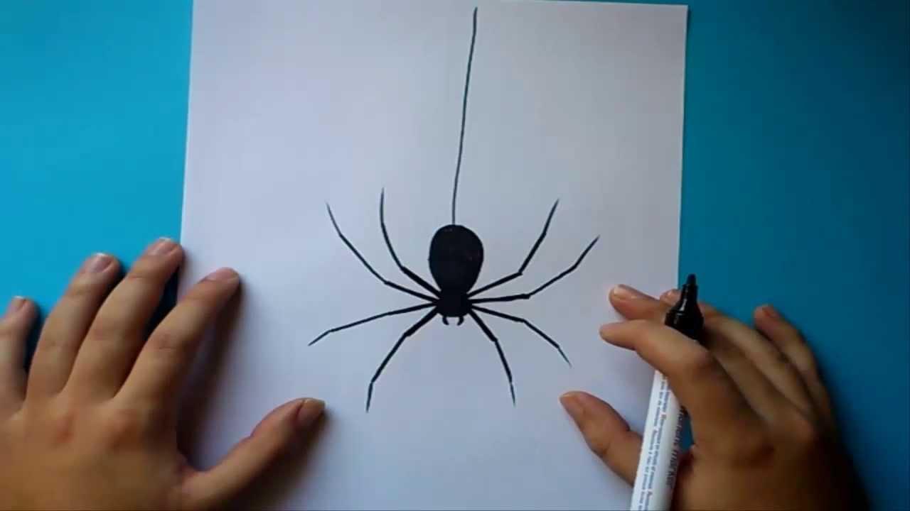 Como Dibujar Una Arana Paso A Paso How To Draw A Spider Youtube - Dibujos-araas-halloween