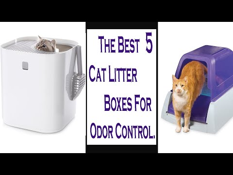 The Best 5 Cat Litter Boxes For Odor Control ||Best Automatic Litter Boxes