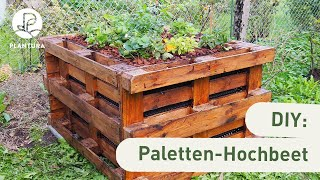 DIY: Hochbeet aus Paletten selber bauen (Anleitung)