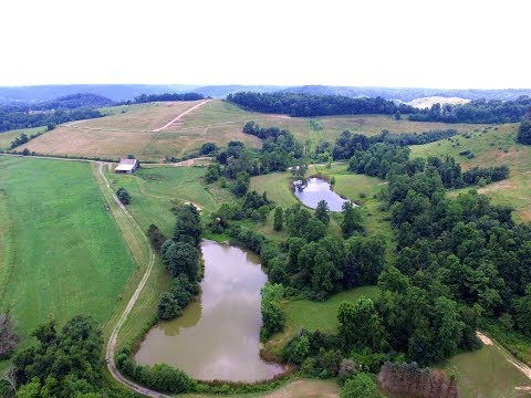 Wills Creek Retreat - 243 Acres For Sale - Guernsey County, Ohio