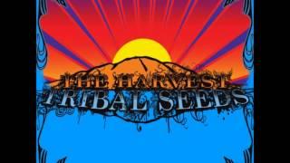 01 Tribal Seeds - The Garden