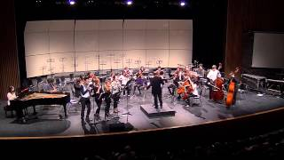 Nothing: Art Pop Ensemble and Bel Canto Strings