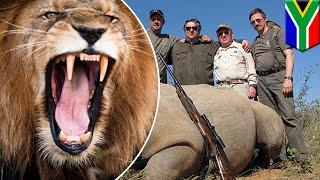 南アフリカでサイの密漁を企んだ数人のグループが私営動物保護区に侵入...