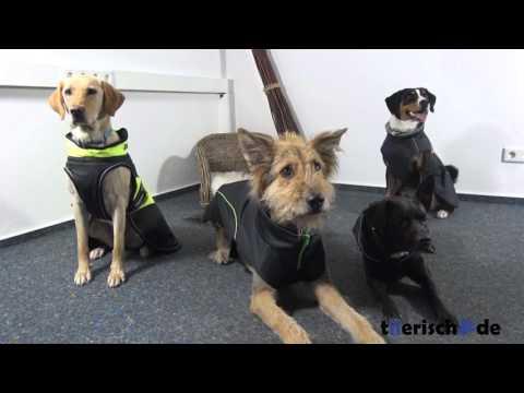 Hundemantel - Größe bestimmen