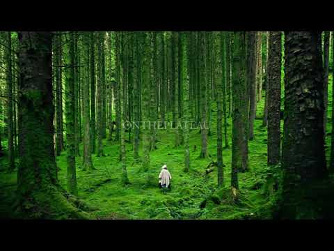 ON THE PLATEAU - GREEN ( Bonus Track Colour Album )