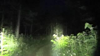 山歩き用フラッシュライトを照らし比べる thumbnail