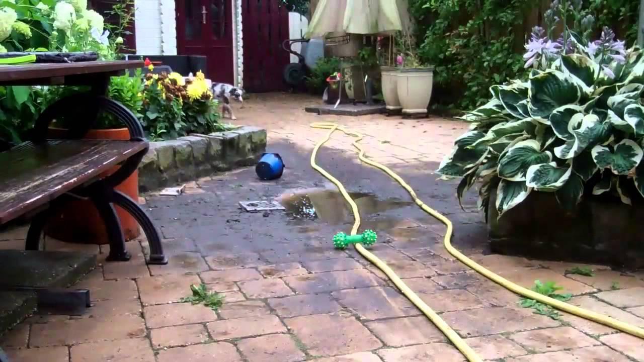 Putje in de tuin is verstopt gino weken oud vindt het youtube