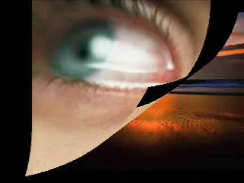 mafalda veiga o lume