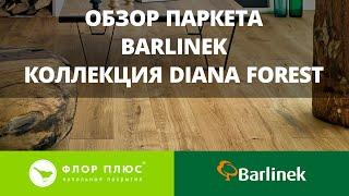 как выбрать паркет. Обзор паркета Barlinek - коллекция Diana Forest