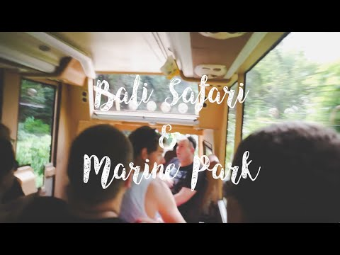 Trip to Bali | Bali Safari & Marine Park
