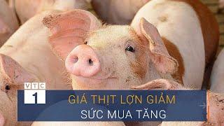 Thanh Hóa: Giá thịt lợn giảm, sức mua tăng đột biến | VTC1