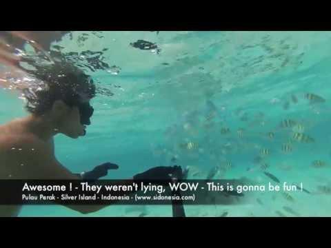 Free Diving - Pulau Perak in Pulau Seribu (Silver Island, thousand islands) Indonesia