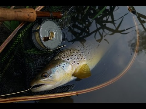Mayfly Meadows - Fly Fishing From The Banks Of A Small English River