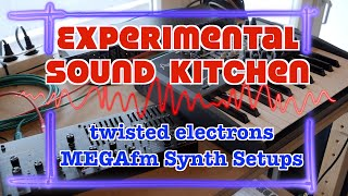 ESK - twisted electrons MEGAfm Synth Setups