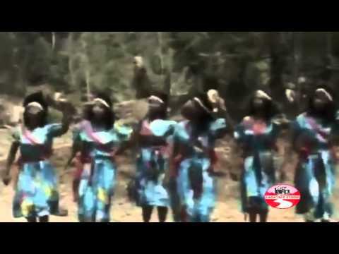 Oromo Music | OromianEconomist