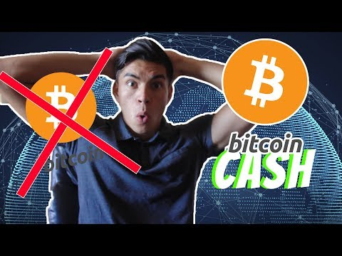Is Bitcoin Dying?? Bitcoin Cash More Profitable For Mining!
