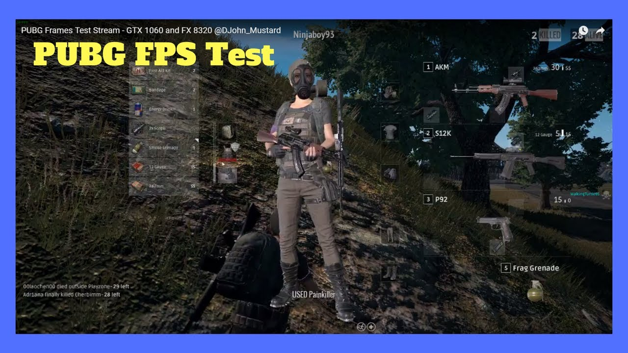 GTX 1060 And AMD FX 8320 PUBG FPS Test. PlayerUnkown's