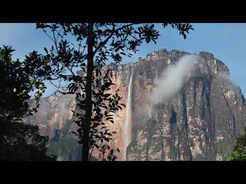 Canción Ayahuasca | Icaro - Deja todo atras y vuele a comenzar | Kerepakupai Merú