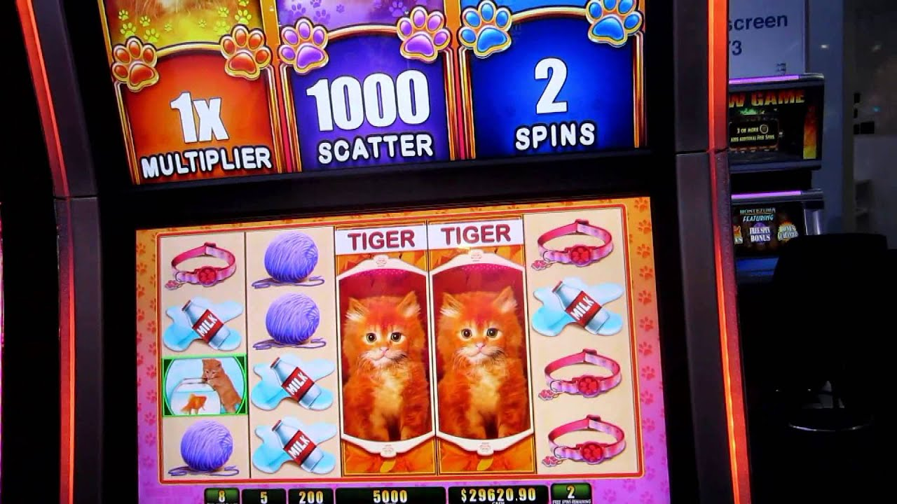 Betway casino usa