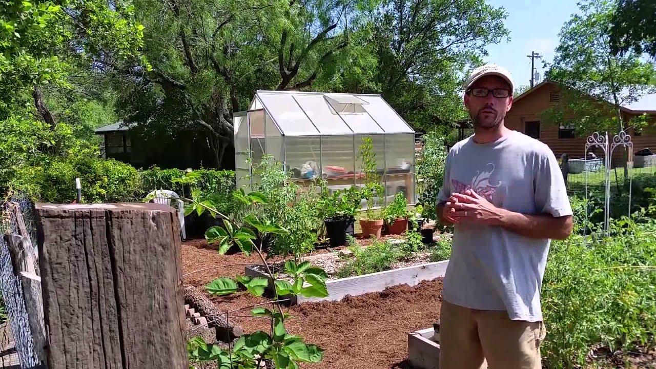 Starting Raised Garden