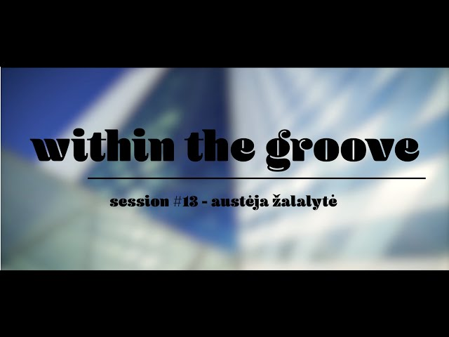 Within the Groove #13 - austeja zalalyte