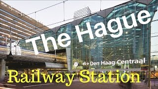 the hague tourist