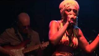 "Mo'kalamity & The Wizards ""Jah Love"""