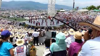 San Juan Bautista Tuxtepec, Flor de Piña