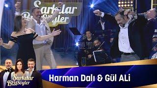 Sibel Can & Hakan Altun & Hüsnü Şenlendirici & Ata Demirer - Harman Dalı & Gül A