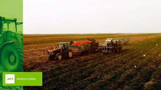 JALTEST CASE STUDY | Injector coding in harvester MTS Sandei TH500 with engine level 16