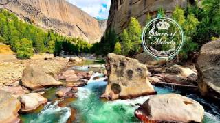 Bird Water Wind Harp Violin: Nature sounds, Relax Music ♫39