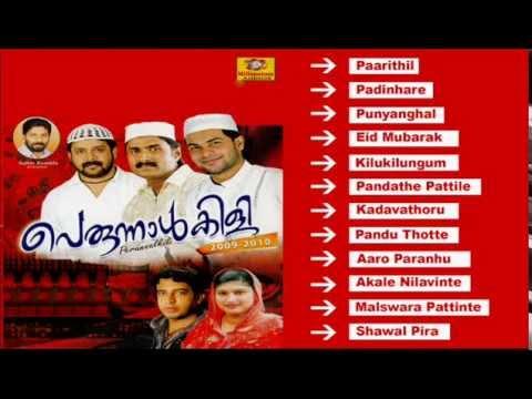 Perunnal Pattukal | Perunnalkili 2009-2010 | Malayalam Mappila Songs | Audio Jukebox