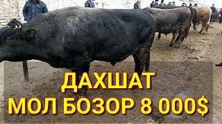 Бука боксанг 2019 г. МОЛ БОЗОР НАРХЛАРИ