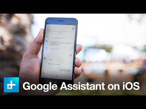 Thumbnail: Google Assistant on iOS