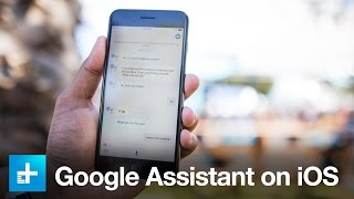 Google Assistant on iOS