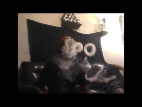 Hookah Tricks!! - 2014 Montage