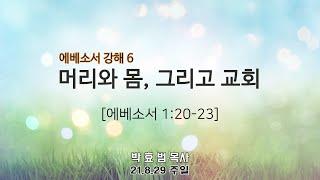 2021년 8월 29일 4부 주일예배(청년부예배) 설교 박효범 목사
