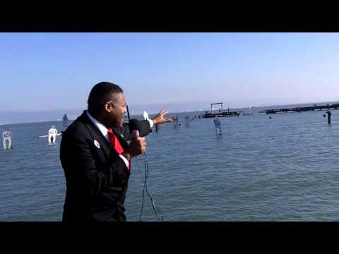 THE MAYOR  Video by Elect HAROLD MILLER 4 SAN FRANCISCO MAYOR N 2015 - Myspace Video.mp4