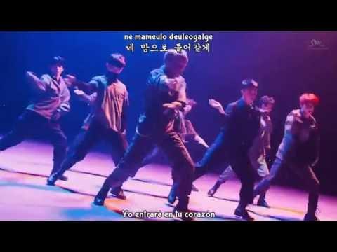EXO-K ʚɞ Monster MV (Sub Español) HD