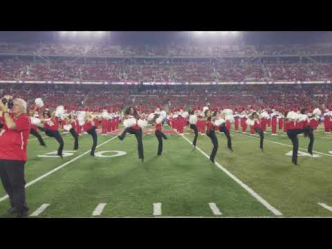 University of Houston Cougar Dolls Dance Team