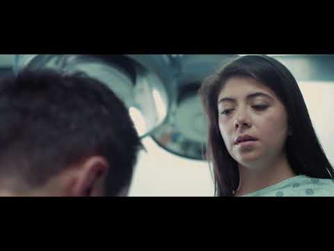 Beauty And The Beholder 2018 HD Movie Trailer Watch It Now | Comedy Movie