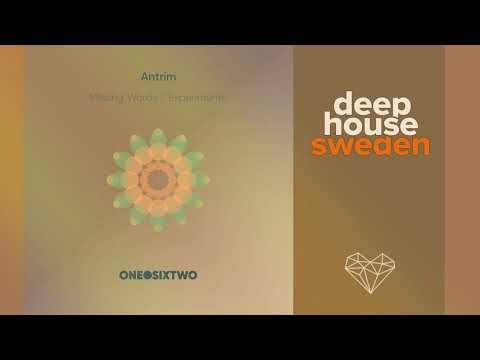 Antrim - Missing Words (Nicolas Rada Remix)