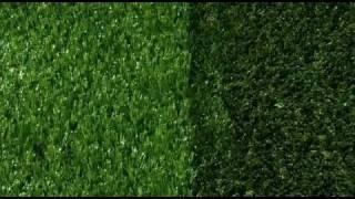 Jak se tvoří trávník?