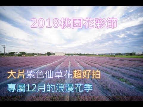 2018桃園花彩節