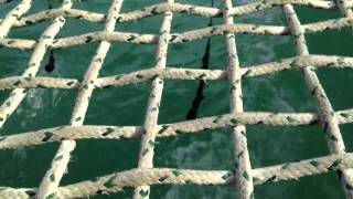 20 Seconds Looking Through Net Deck of Catamaran